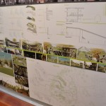 экологический институт