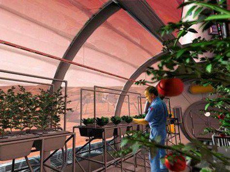Растения на марсе